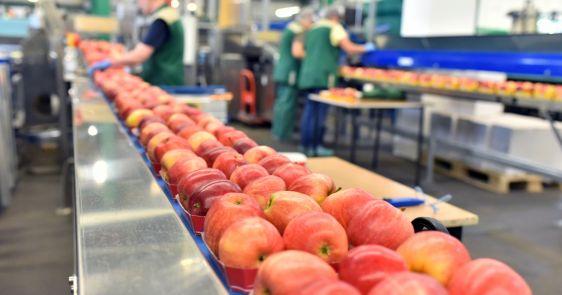 EU za oblasti poljoprivrede, ruralnog razvoja, bezbednosti hrane, veterinarske I fitosanitarne politike